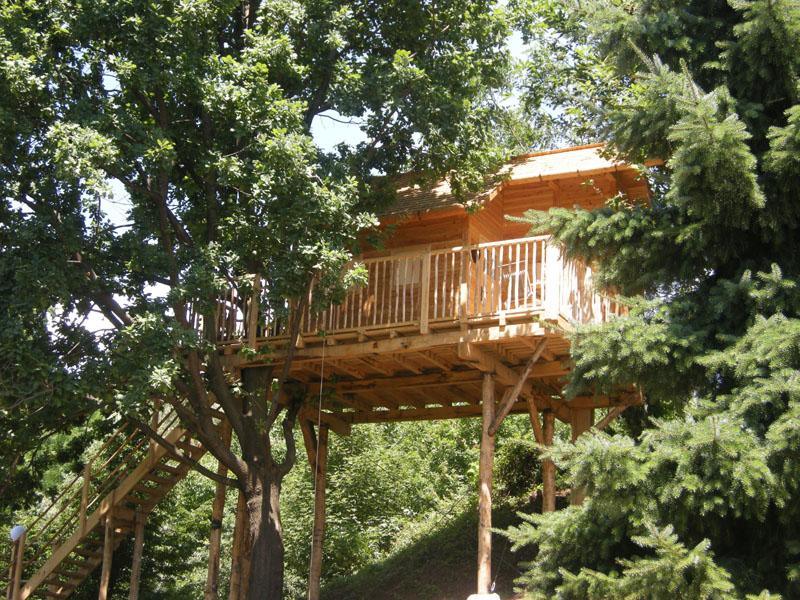 Treehouses vivere nelle case sugli alberi ipercaforum - Il giardino dei semplici ...