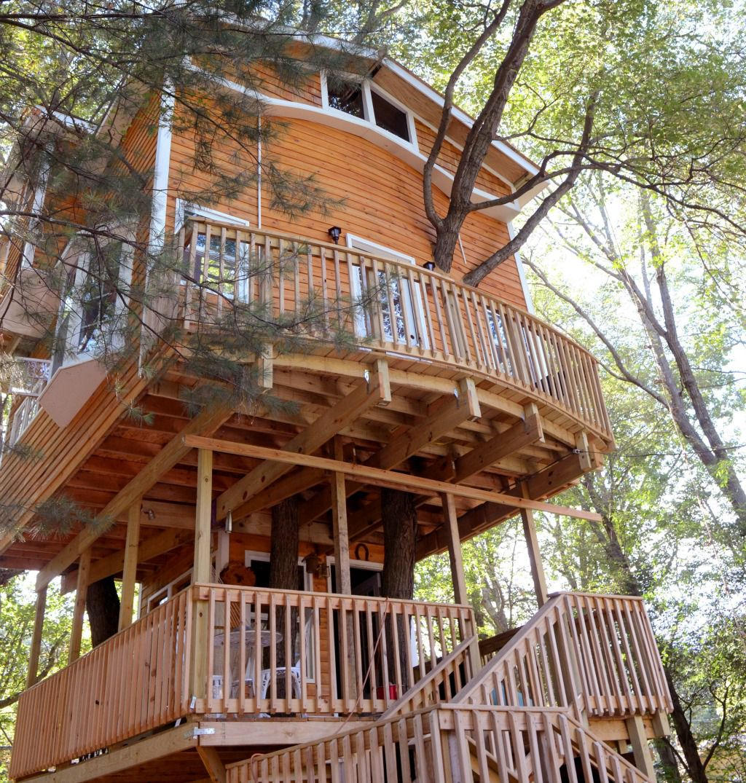 Altro che casetta il nonno costruisce ai nipoti una villa for Casa sull albero firenze