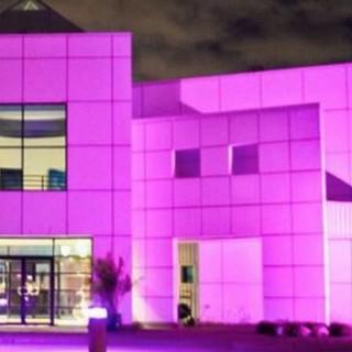 Da ottobre la dimora di Prince diventerà un museo aperto al pubblico