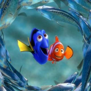 Nemo abita qui: un tuffo nella Grande barriera corallina