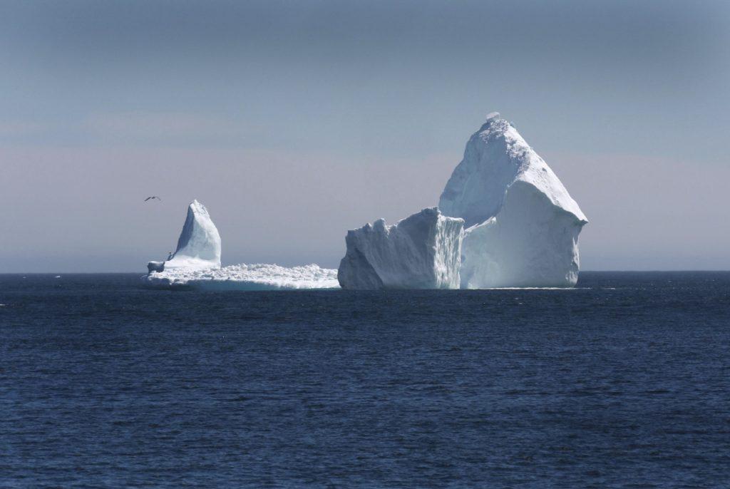Risultati immagini per iceberg canada