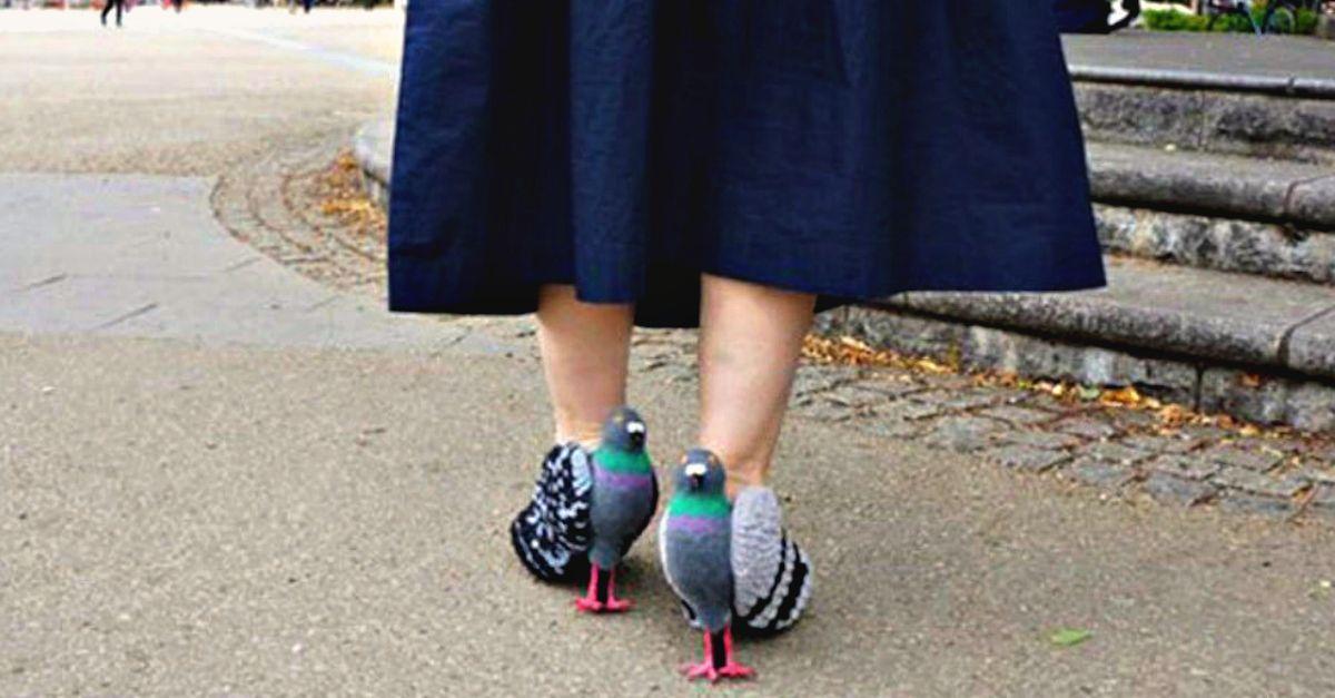 giappone ecco le scarpe piccione foto radio deejay