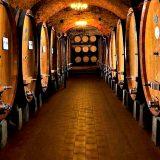 'Cantine Aperte d'Italia' compie 25 anni: torna la manifestazione dedicata al turismo del vino