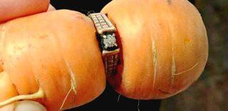 """Carota restituisce l'anello perduto a una signora 84enne: """"Non ci speravo più"""""""