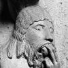 Virgilio Monadelfi