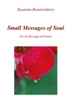 copertina Small Message of Soul