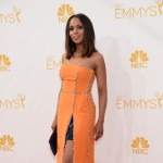 Emmy 2014, tutta una questione di stile