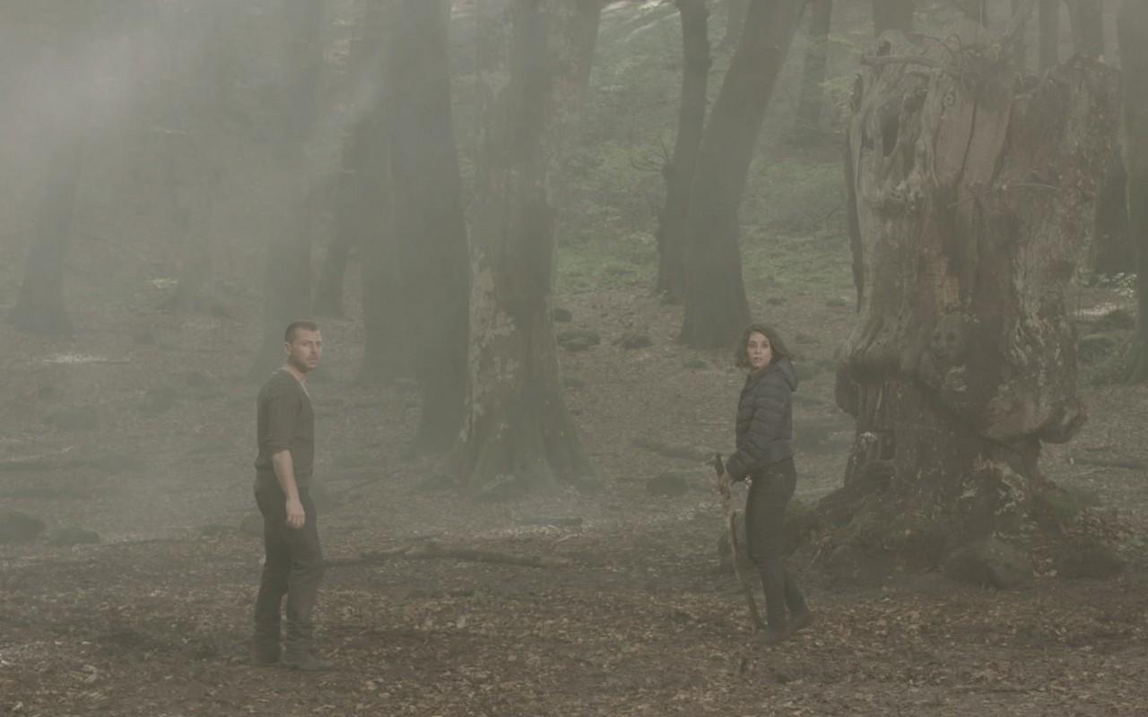 Il bosco, solo Nina crede all'innocenza di Alex: anticipazioni