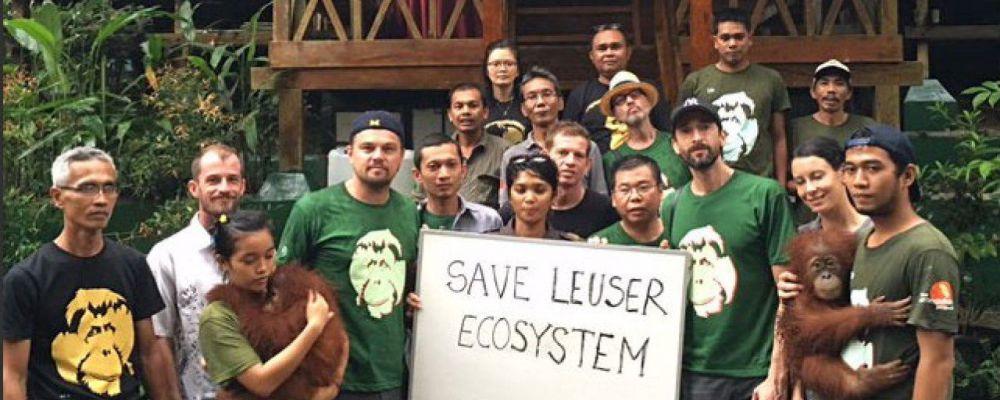 Leonardo DiCaprio contro l'olio di palma in Indonesia