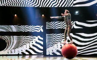 Italia's Got Talent 2016, vince il virtuoso dell'armonica Moses