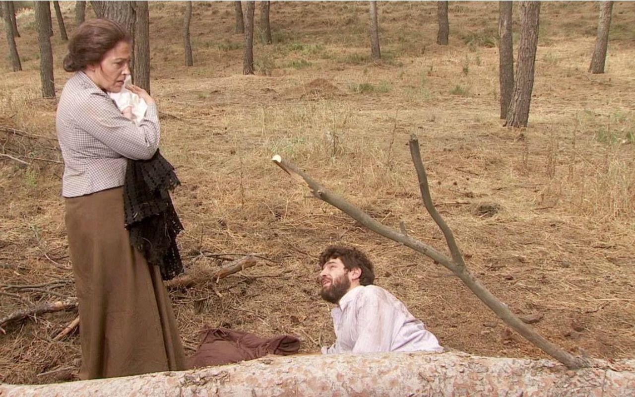Il Segreto, Bosco colpito da un albero: anticipazioni del 20 ottobre
