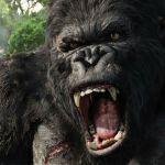King Kong, il gorilla gigante diventa una serie tv con protagonista femminile