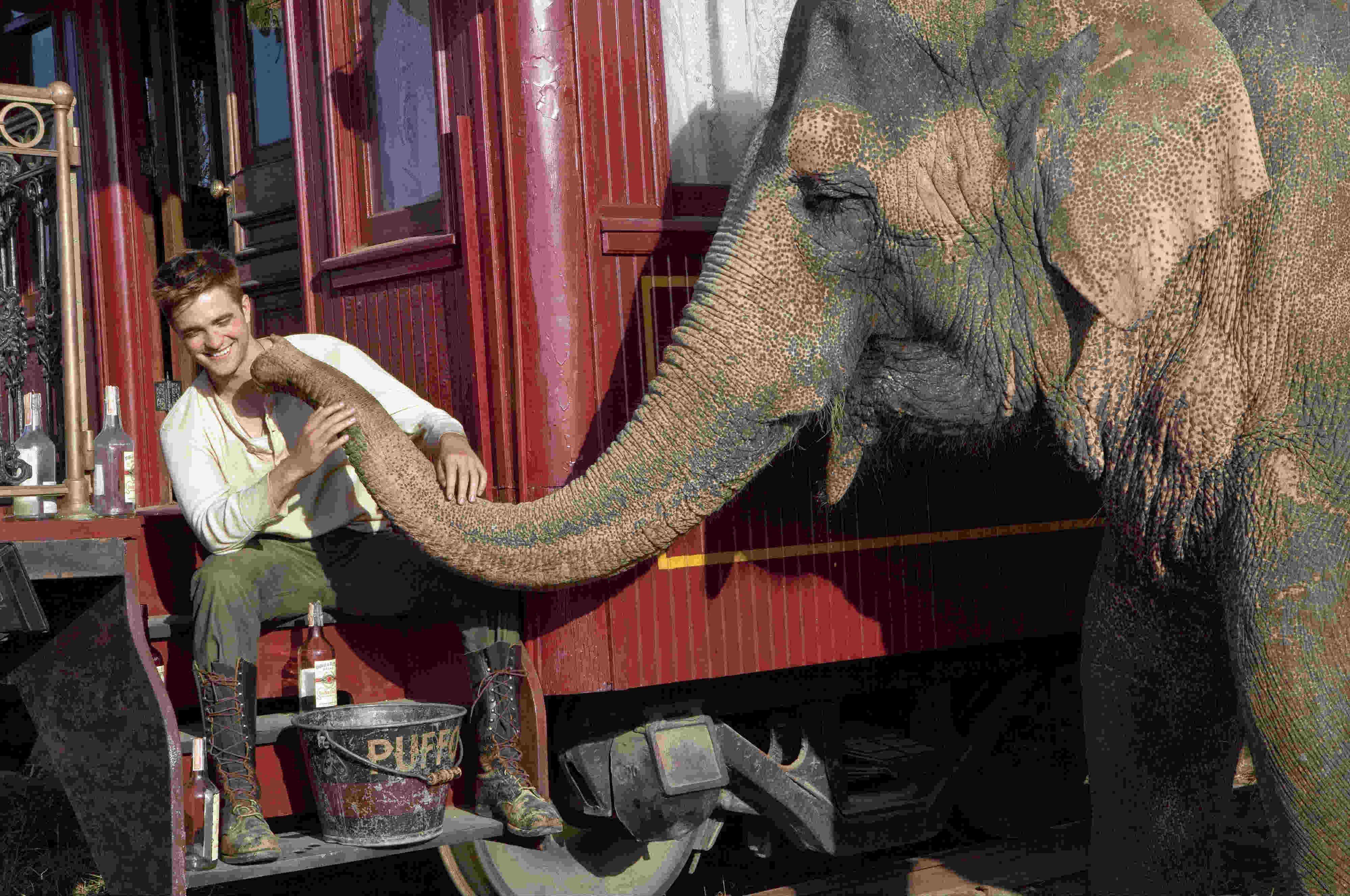 Come Lacqua Per Gli Elefanti Cast Trama E Curiosità Del Film Con
