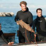 Shark Killer: cast, trama e curiosità sul film di Italia1