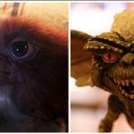 Gremlins 3, il ritorno del mogwai Gizmo è imminente