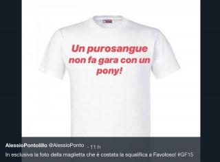 Grande Fratello 2018, Luigi Favoloso squalificato: i meme sulla maglietta