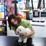 Su Sky Uno ritorna Loves Animals e apre il Tg degli animali