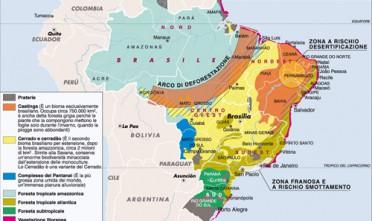 Un codice forestale flessibile per il Brasile
