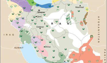 Maionese iraniana dettaglio