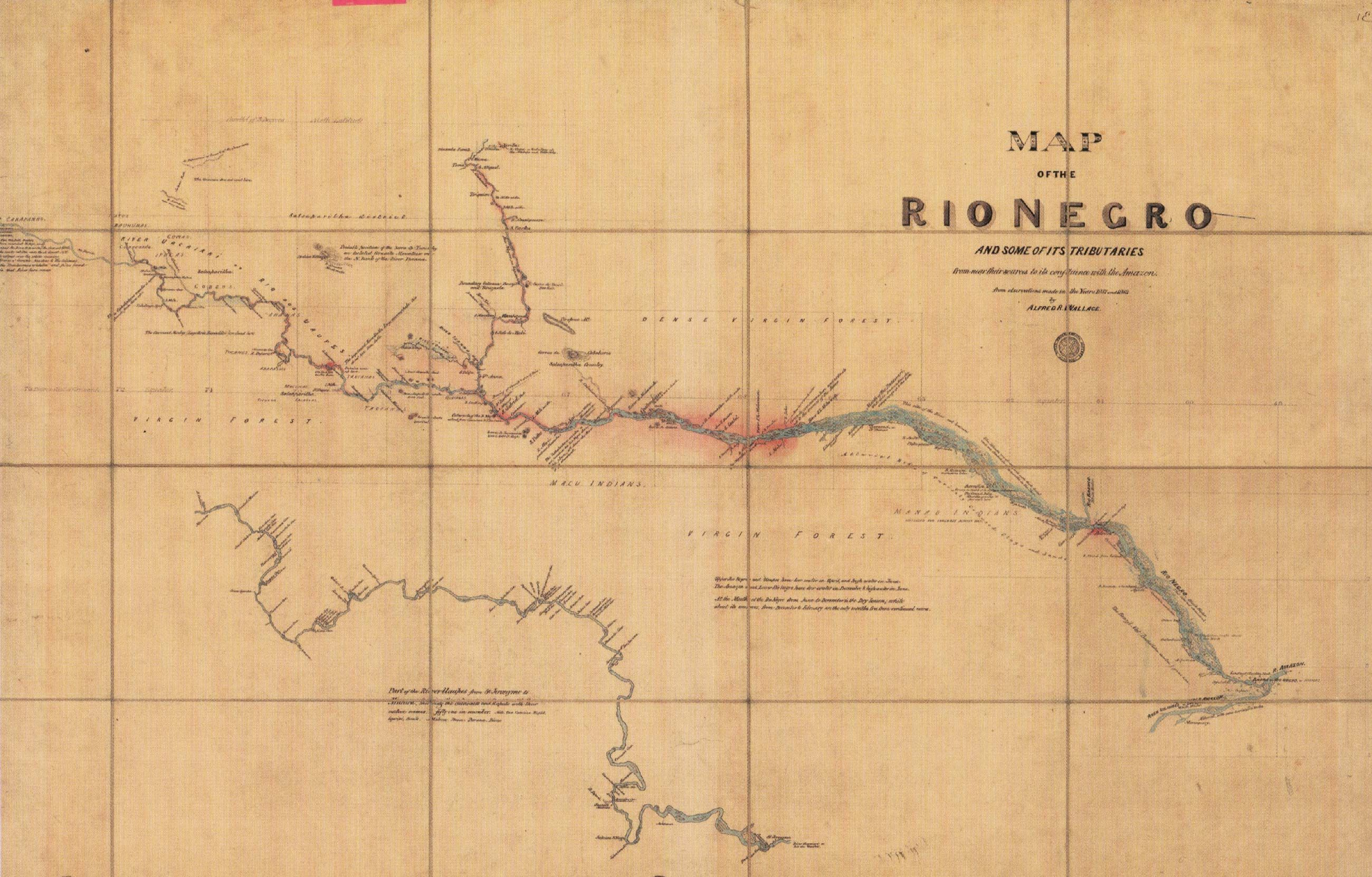 Fonte: A.R. Wallace, «Map of the Rio Negro and some of its tributaries», Journal of the Royal Geographical Society, London 1853.