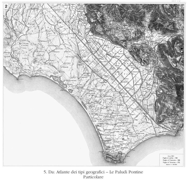 paludi_pontine_particolare_pennacchi_519