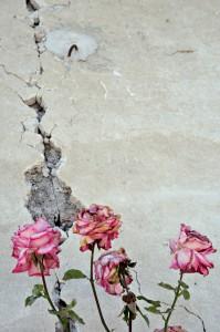 Le macerie di Pescara del Tronto devastata dal sisma del 24 agosto