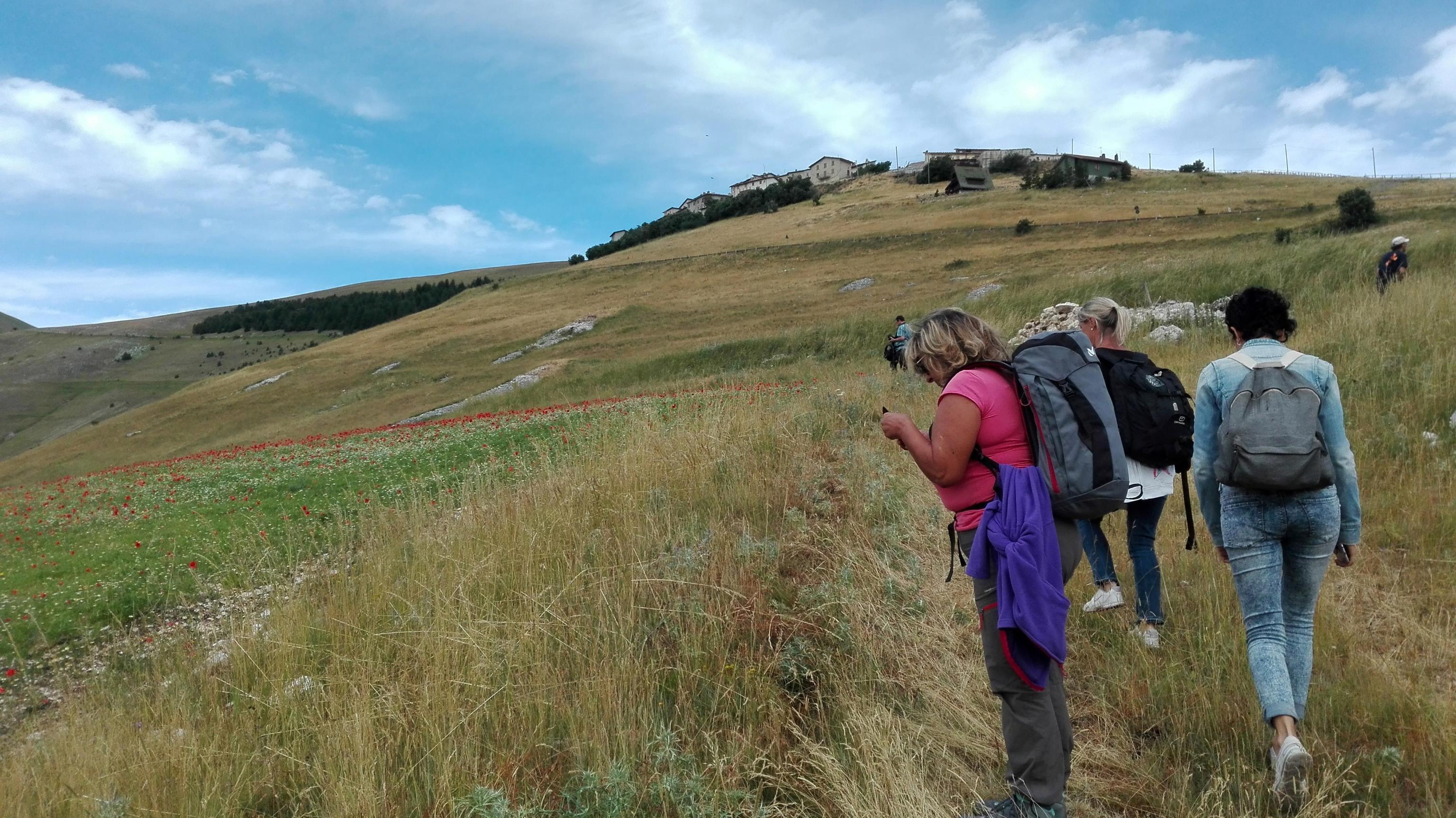 Terremoto:partita prima navetta,turisti tornano Castelluccio
