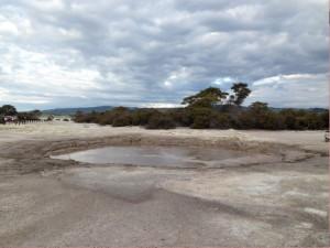 Le pozze di acqua bollente di Rotorua.