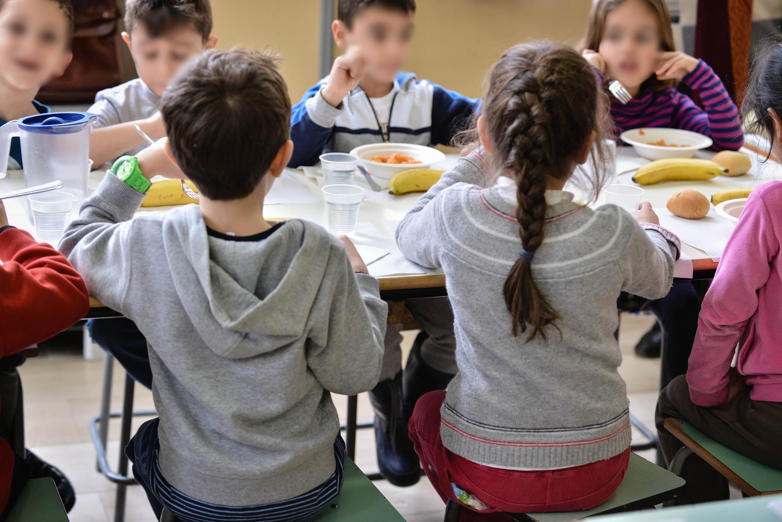 Niente cibo vegano all'asilo, il Tar condanna il Comune
