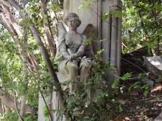 Il cimitero di Sampierdarena