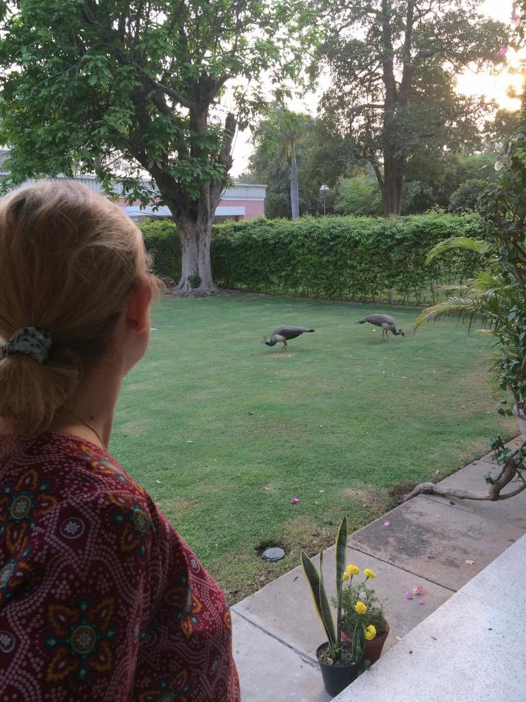 Paola nel giardino di un'amica