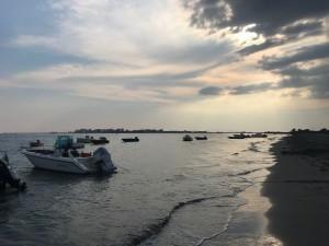 VDM Marinetta barche 2