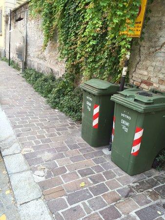 Stesse erbacce presenti nel piazzale del Don Gnocchi.....