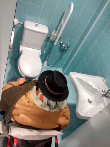 """mostro di via kennedy"""" e bagni per disabili inagibili  parma, Disegni interni"""