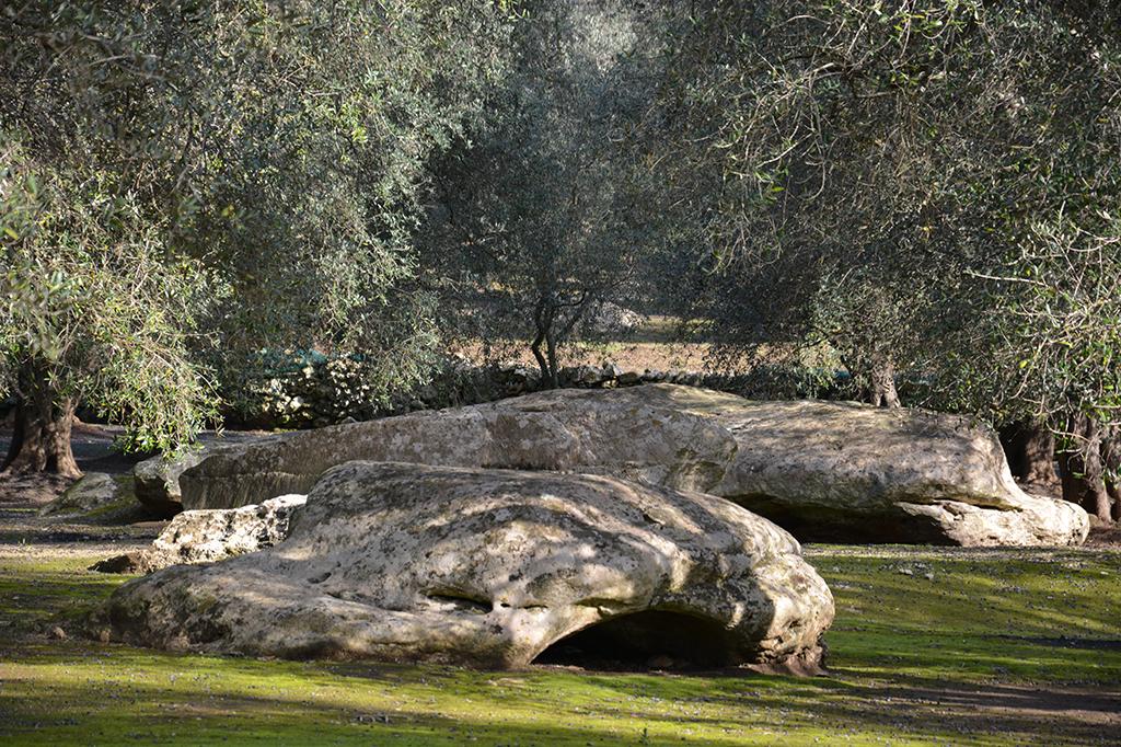 Il paesaggio archeologico tutelato, Giuggianello (LE)