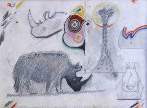 Rinoceronte e Giraffa