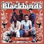 lovebyrds-soft-easy-blackbyrds-cd-cover-art