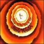 Stevie Wonder - Ngigulela Es Una Historia I Am Singing