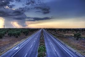 Olive Motorway di Paola Margari