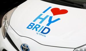 hybrid-428183_1920