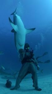 sharkman007