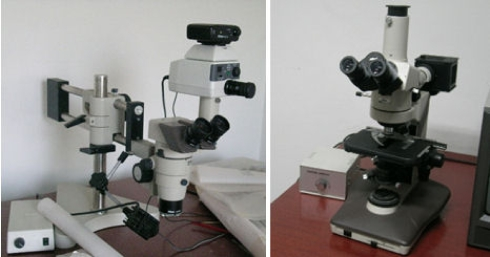 Fig.1: I microscopi del laboratorio.