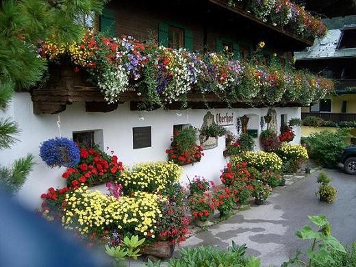 Per due giorni villach sar inondata dai fiori austria vicina blog finegil - Immagini di giardini fioriti ...