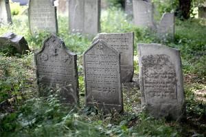 13.07.09 Vienna, tombe ebraiche
