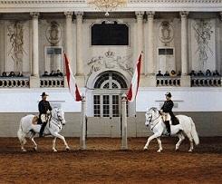 15.06.10 Spanische Hofreitschule, Scuola di equitazione spagnola di Vienna - Copia