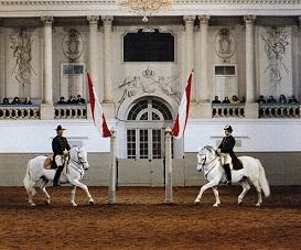 16.02.25 Vienna, Spanische Hofreitschule (Scuola di equitazione spagnola) - Copia