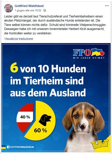 18.06.05 Pagina Facebook Gottfried Waldhäusl su cani immigrati