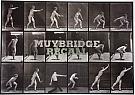 MuybridgeCover