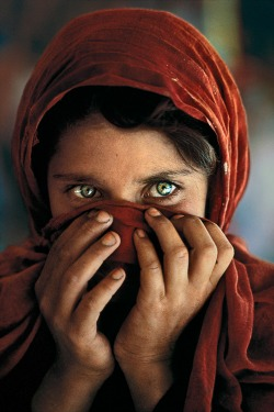 "Steve McCurry Sharbat Gula, la ""Ragazza afghana"", nel campo profughi di Nasir Bagh, nei pressi di Peshawar, Pakistan, 1984, Steve McCurry, g.c."