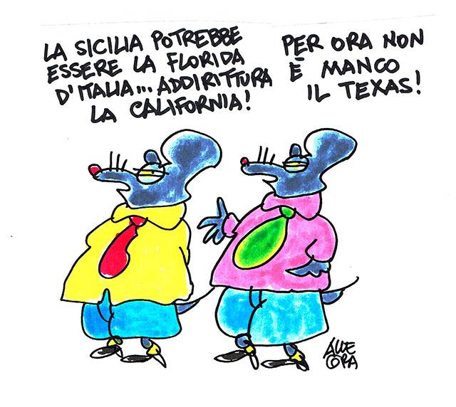 sicilia-florida